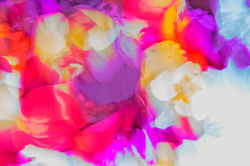 Nature,Vibrant coloured pantones