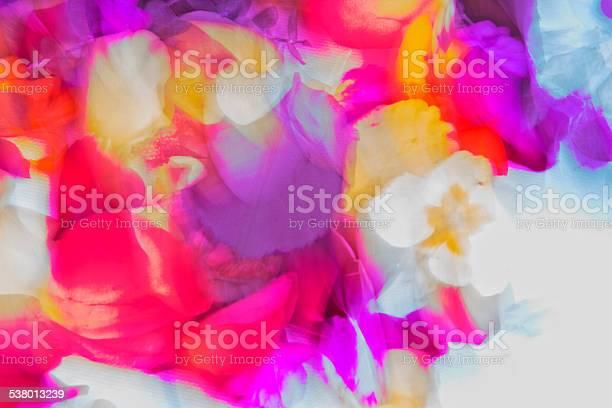 Photo of Nature,Vibrant coloured pantones