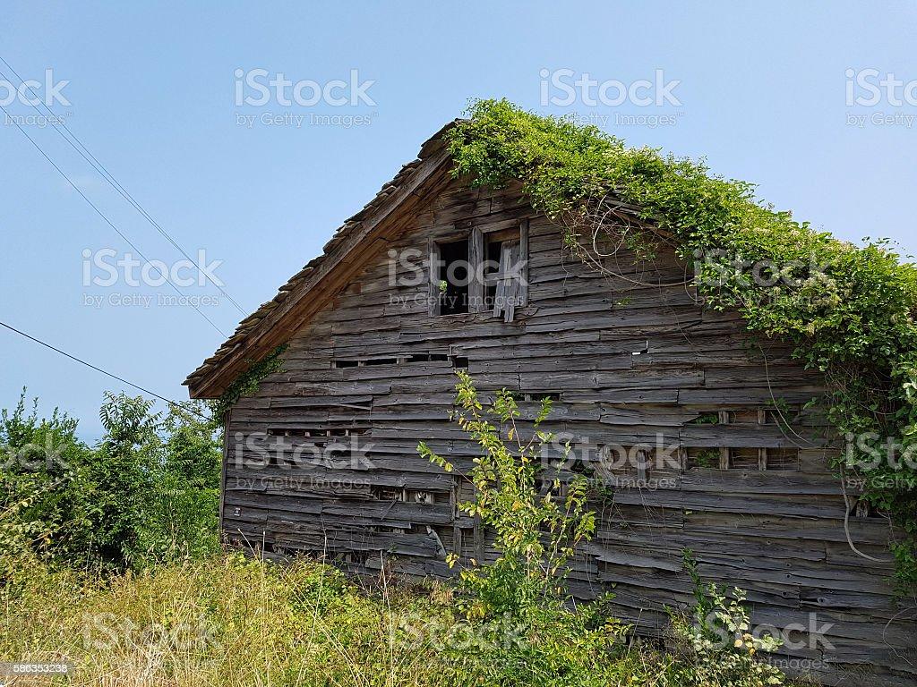 Naturhaus stock photo