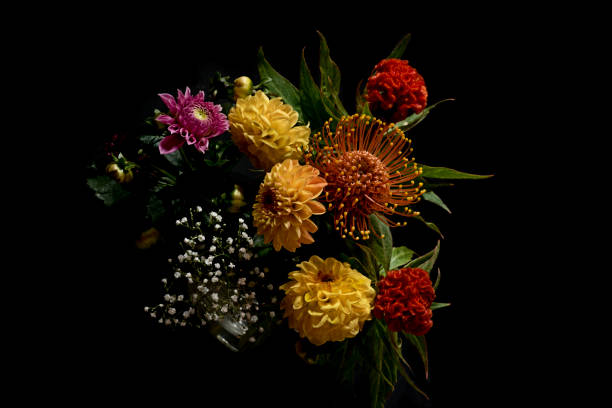 Naturmort Herbstfarben – Foto