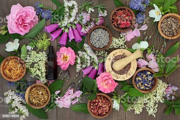 Naturopathic flowers and herbs picture id636019834?b=1&k=6&m=636019834&s=612x612&h=wxkcwclarxac6mrjlnsa5pyp1chwehjcylawawts8yk=