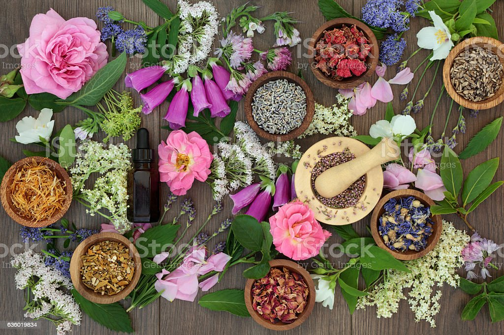 Naturopathic Flowers and Herbs stock photo