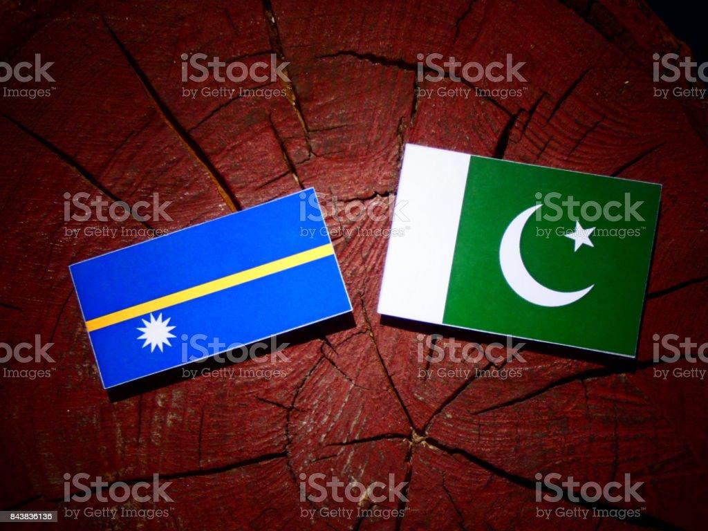 Nauru flag with Pakistan flag on a tree stump isolated stock photo