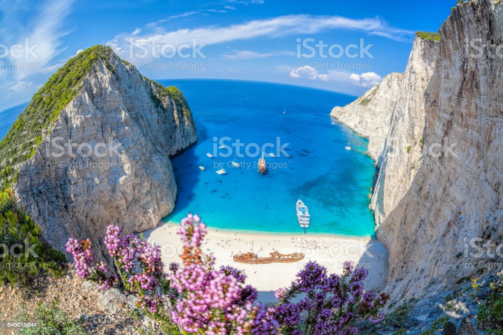 Navagio beach with shipwreck and flowers on Zakynthos island in Greece stock photo