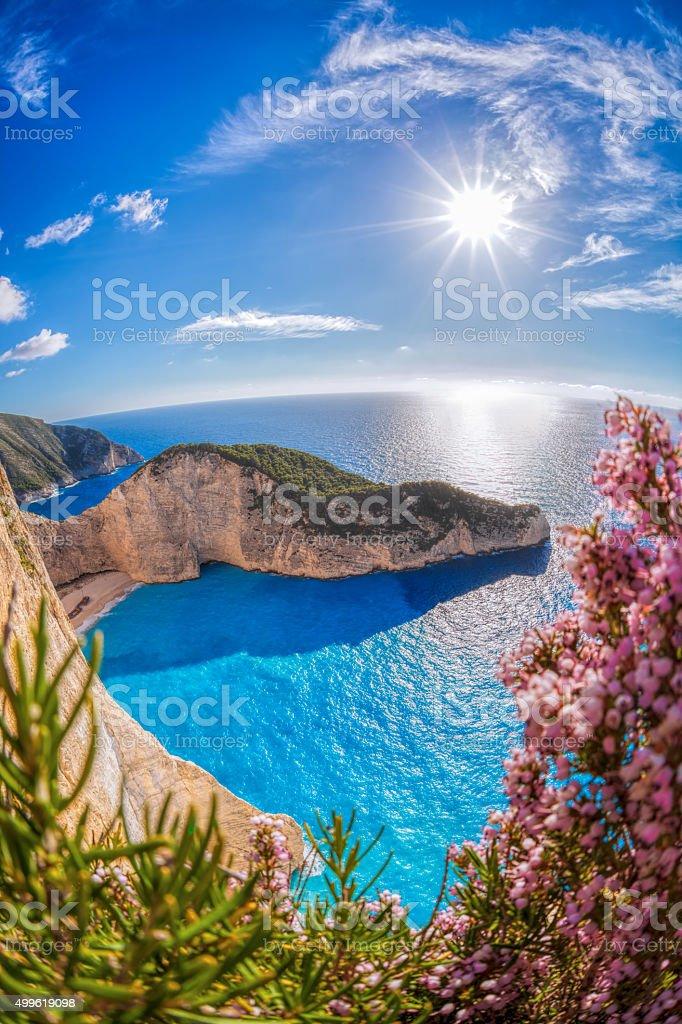 Navagio beach with shipwreck on Zakynthos island in Greece Navagio beach with shipwreck and flowers on Zakynthos island in Greece 2015 Stock Photo