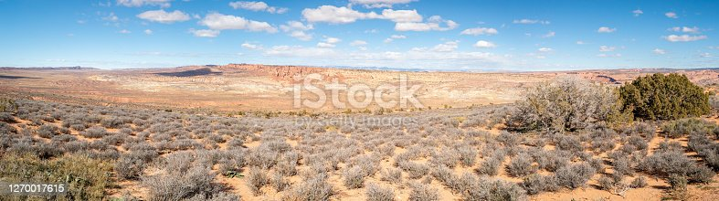 Navajo sandstone Desert Panorama landscape. Typical American beauty in nature. Travel and tourism in the USA