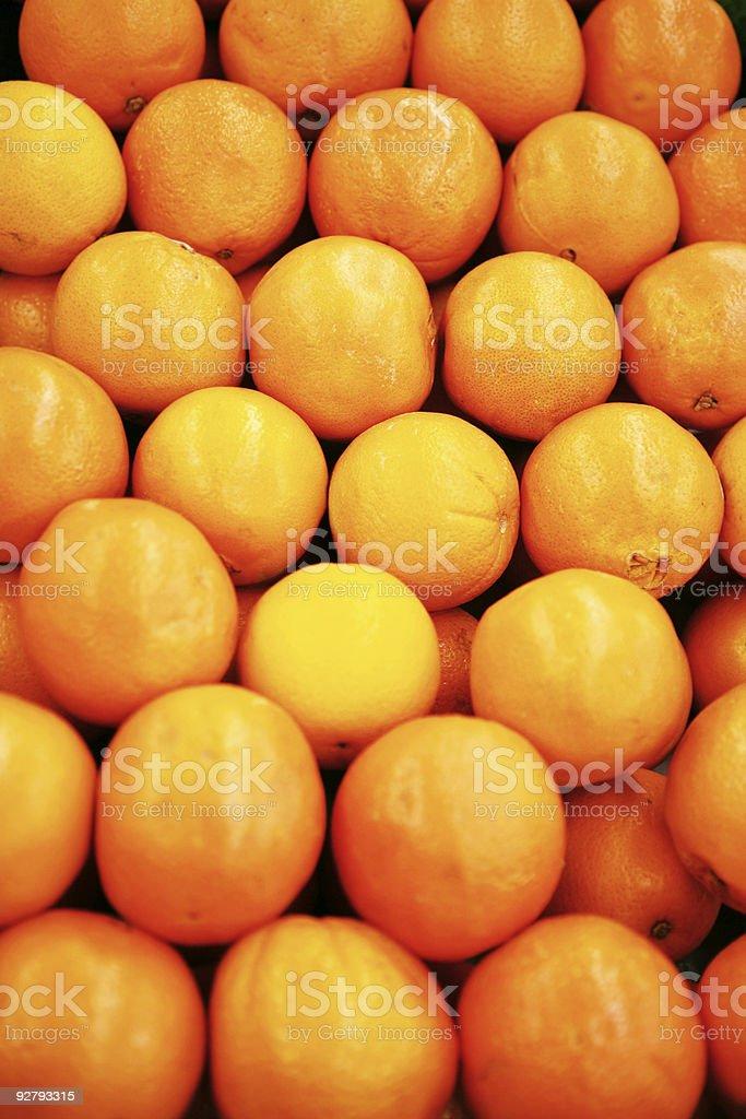 Navel Oranges royalty-free stock photo