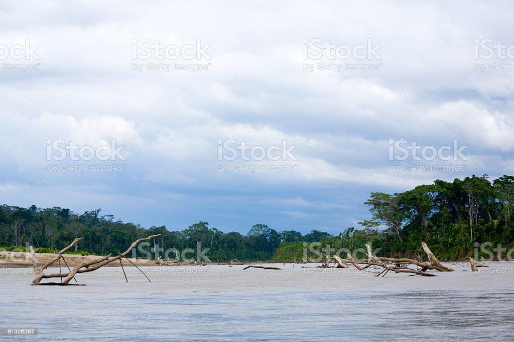 Navigating Manu River royalty-free stock photo