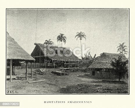 Vintage engraving of Navtive houses in the Amazon, 19th Century