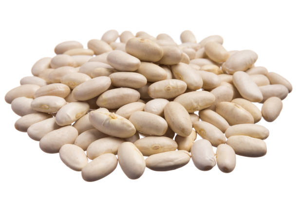 navy bean. pile of grains, isolated white background. - bean stock photos and pictures