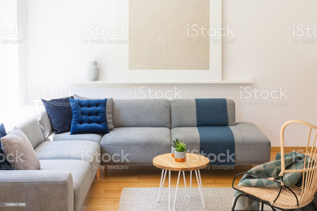 Prime Navy Blue Cushions On A Gray Couch A Wicker Chair And Plants Dailytribune Chair Design For Home Dailytribuneorg