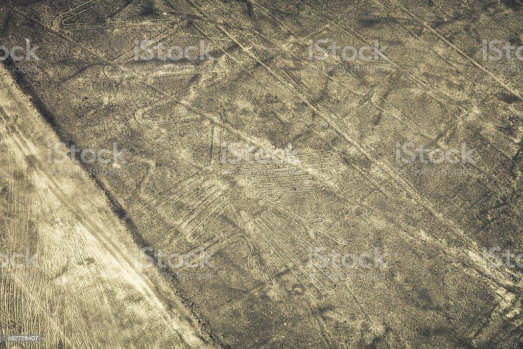 Nazca Lines - Flamingo royalty-free stock photo