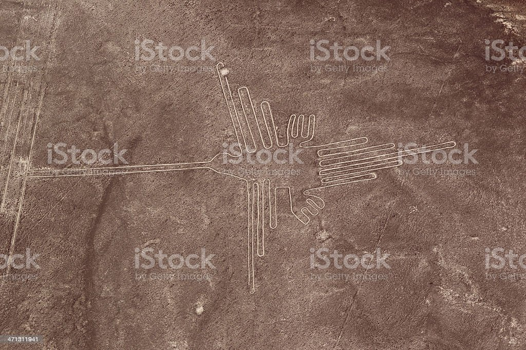 Nazca Lines - Hummingbird stock photo