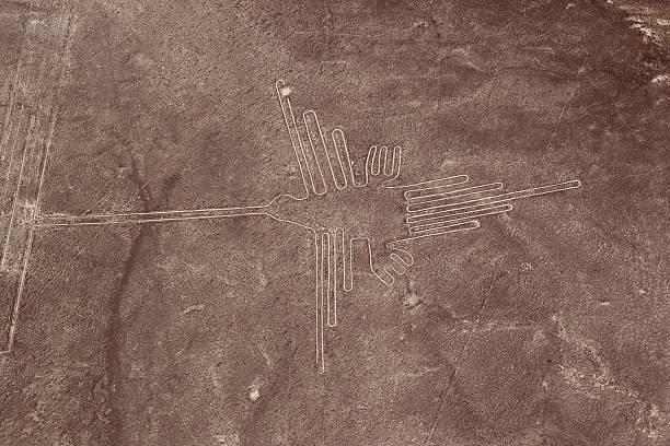 Nazca Lines - Hummingbird stock photo