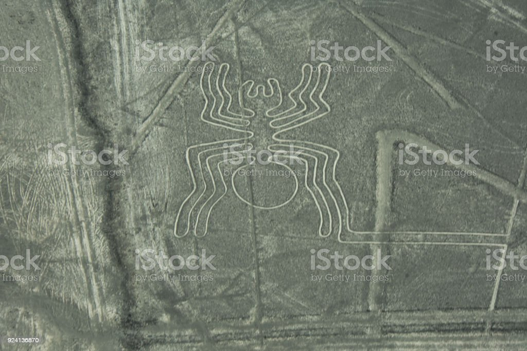 Nazca Lines of The Spider stock photo