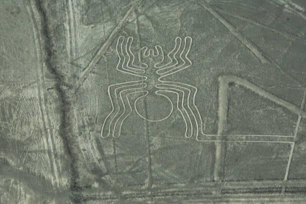 Linien von Nasca der Spinne – Foto