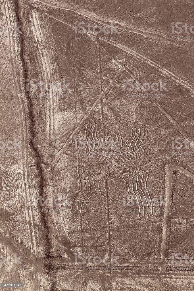 Nazca Lines - Spider stock photo
