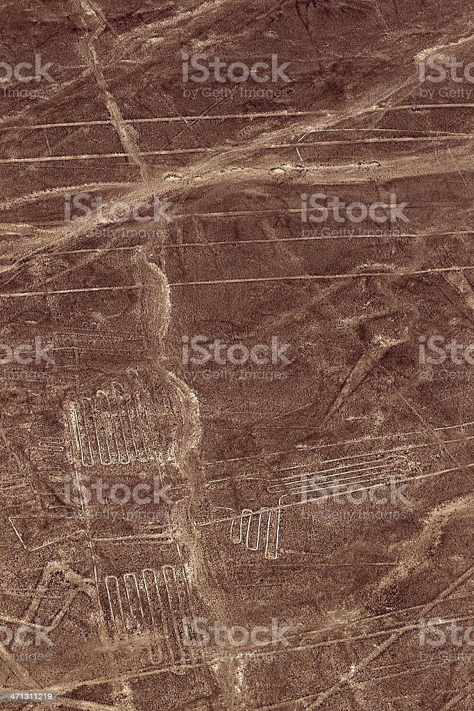 Nazca Lines - Undefined Bird royalty-free stock photo