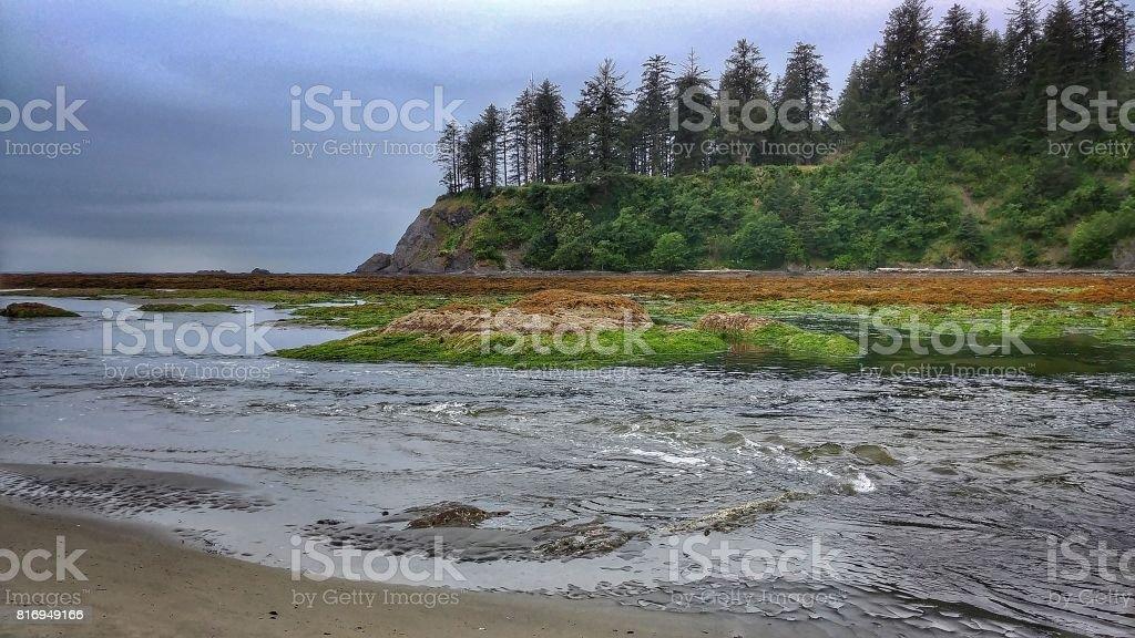 Neah Bay Beach, Makah Tribe, Washington, Mountains, Tide Pools stock photo