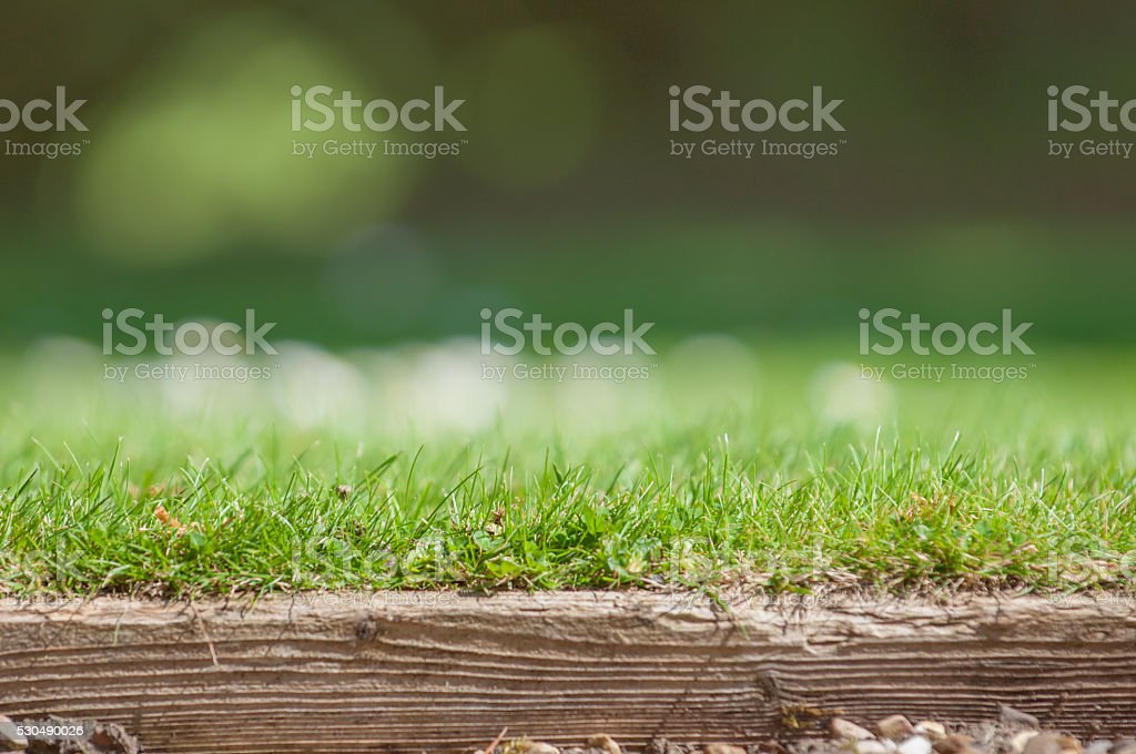 Neat lawn edge with blurred grass background stock photo