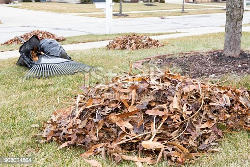 istock Neat raked pile of dried brown fall leaves 908024864