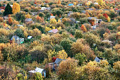 Neat summer cottages among colorful autumn trees at sunset aerial view