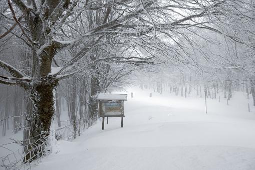 istock Nebrodi Park entrance sign in winter landscape 1132479865