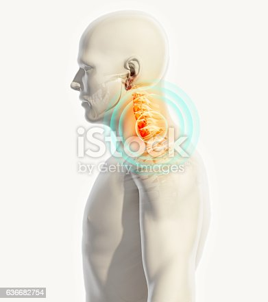 istock Neck painful - cervica spine skeleton x-ray, 3D illustration. 636682754