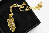 Gold necklace with an owl shaped pendant in black jewel box