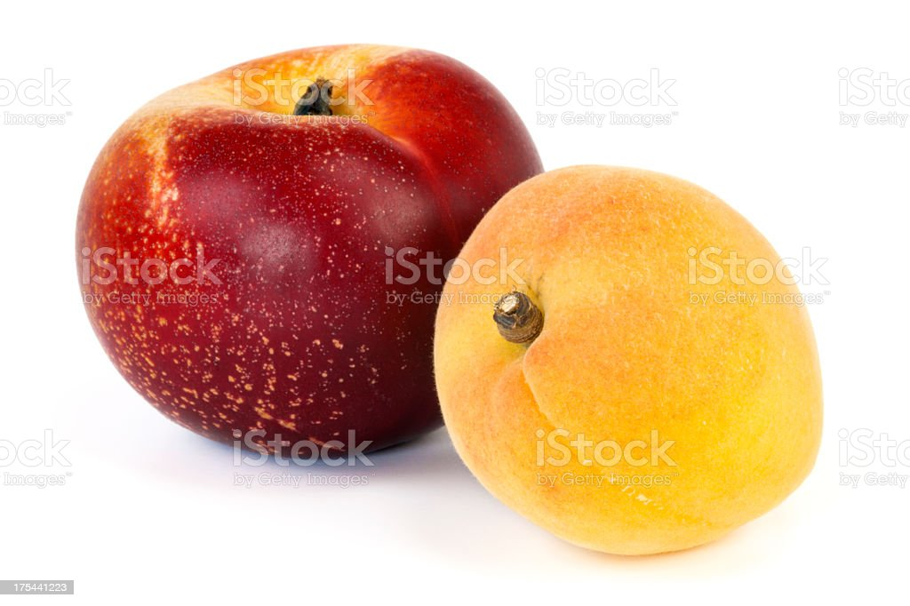 Nectarine and Apricot stock photo