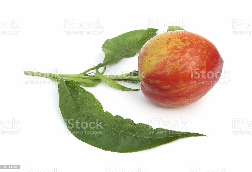 Nectarine with leaves royalty-free stock photo
