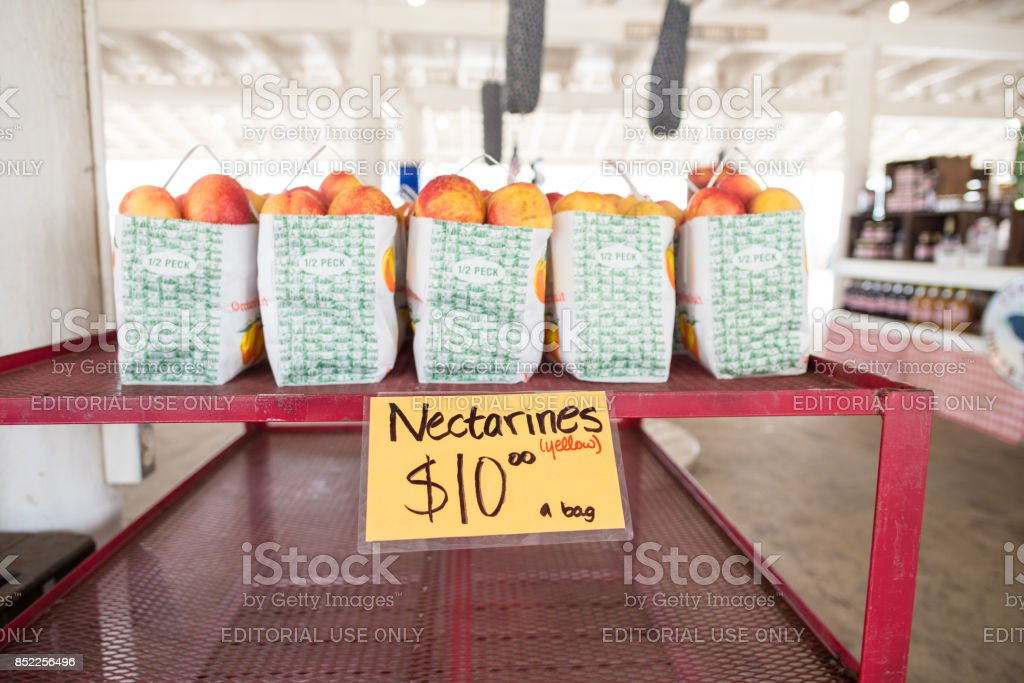 Nectarines for sale at local farmers market in South Carolina Cooley Springs, South Carolina, Sept. 10, 2017: Bags of nectarines for sale at Strawberry Hill market in Cooley Springs, S.C., a beautiful rural area known for farms of peaches and other crops upstate Animal Wildlife Stock Photo