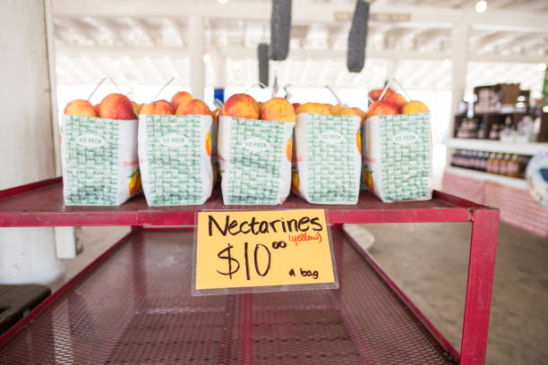 Nectarines for sale at local farmers market in South Carolina Cooley Springs, South Carolina, Sept. 10, 2017: Bags of nectarines for sale at Strawberry Hill market in Cooley Springs, S.C., a beautiful rural area known for farms of peaches and other crops upstate apostate stock pictures, royalty-free photos & images