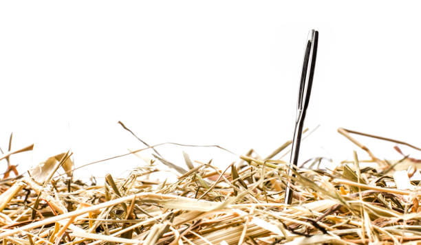 Needle in Straw Needle in Straw sewing needle stock pictures, royalty-free photos & images