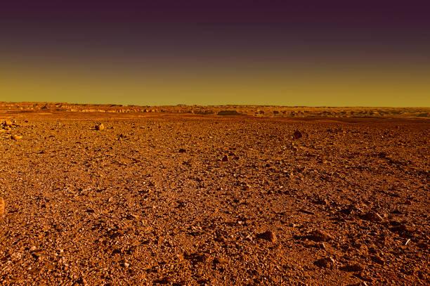 Negev Desert in Israel at Sunset stock photo