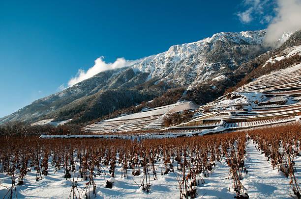 neige - kanton schweiz stock-fotos und bilder