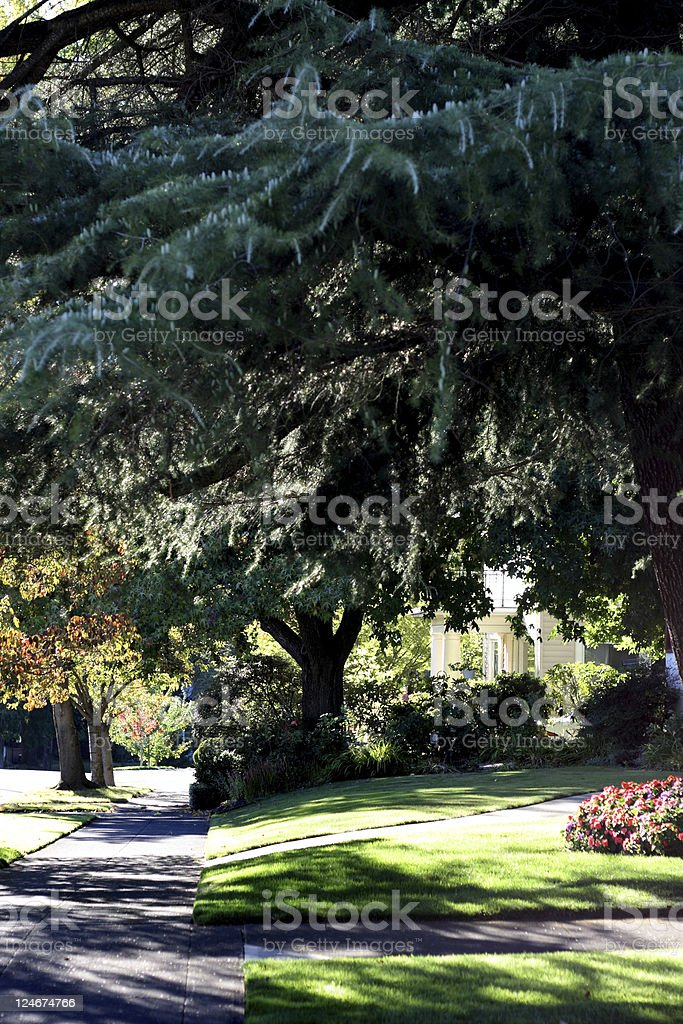 Neighborhood Sidewalk royalty-free stock photo