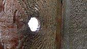 istock Neighborhood Spying 538144849