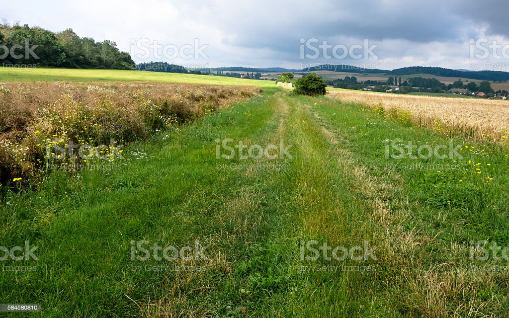 Nemcice - forest and fields with sky stock photo