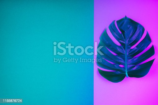 istock Neon colored tropical plant green monstera leaf on acid  pink and blue-green background. 1155876724