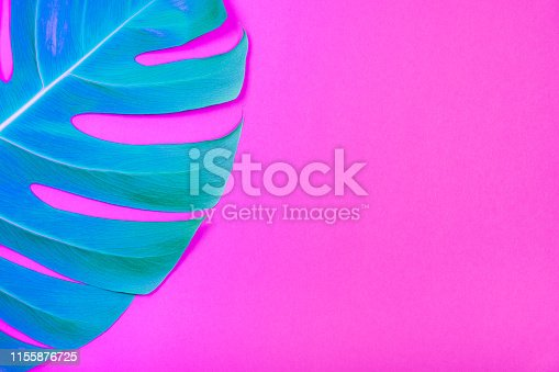 istock Neon colored Tropical plant green monstera leaf on acid plastic pink background. 1155876725