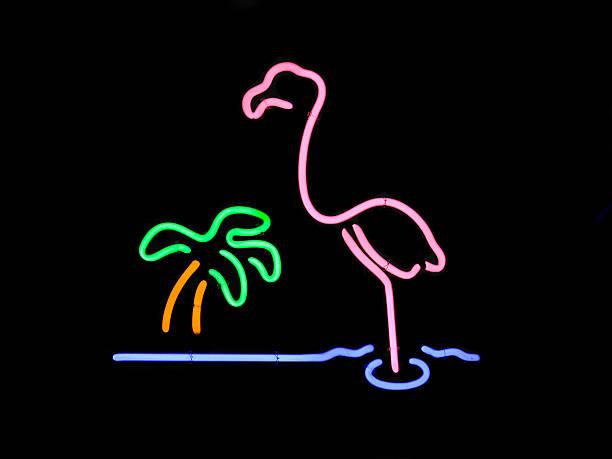 Neon Flamingo and Palm Tree stok fotoğrafı