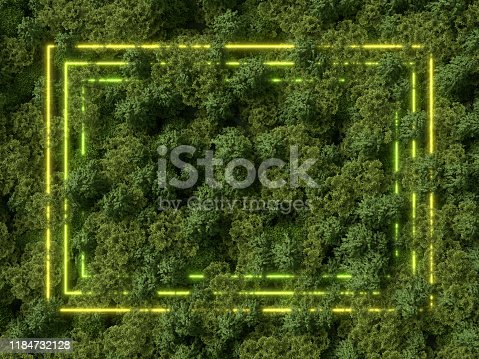 green neon rectangle frame in the forest