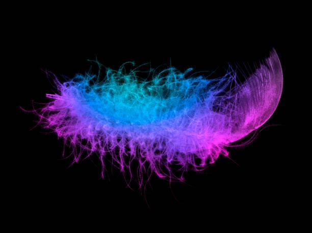 Neonlicht flauschige Feder in die trendige fluoreszierenden Farben auf schwarzem Hintergrund. – Foto