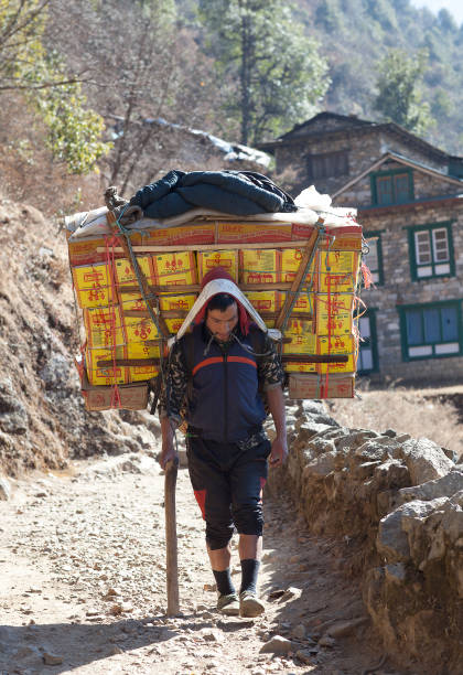 Nepalese porter carrying a heavy load, Nepal Himalayas stock photo