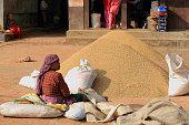 Nepalese woman filling in rice sacks. Panauti-Nepal. 1091
