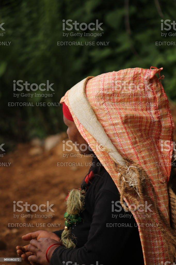 Nepali woman carrying a basket near Annapurna Range, Nepal royalty-free stock photo