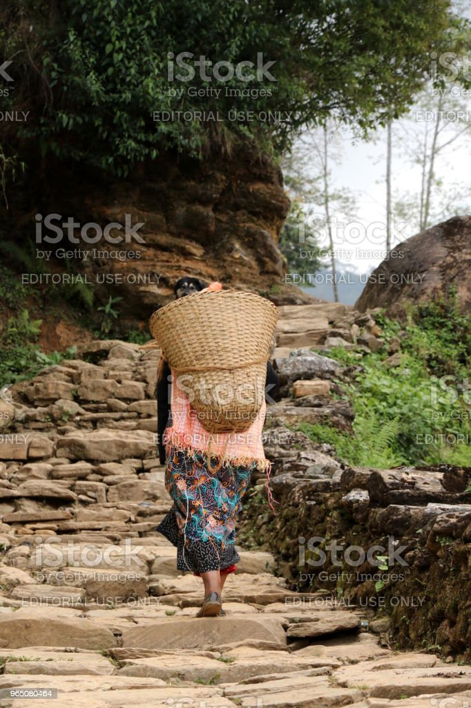 Nepali woman carrying a basket near Annapurna Range, Nepal royalty-free stock photo