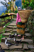Nepali woman carrying a basket, village in Annapurna Conservation Area.