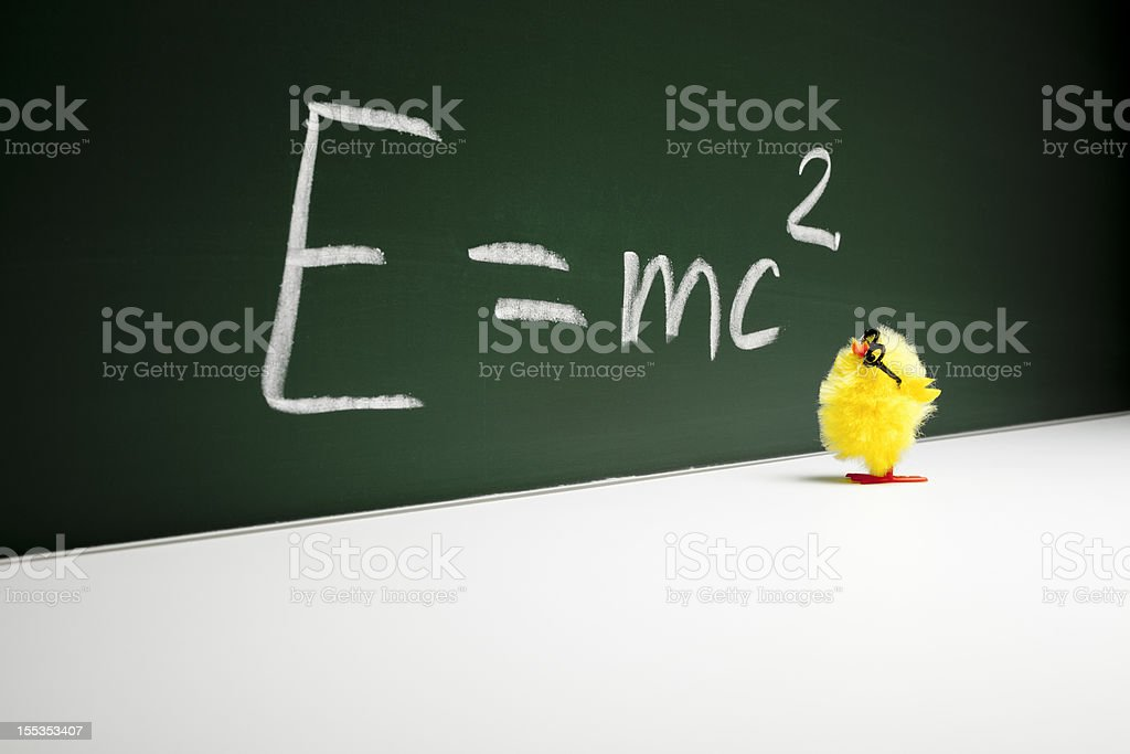 Nerd  Easter Chick Chicken Humor Fun Mathematics Education royalty-free stock photo
